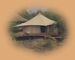 Bedouin style tent at Ol Seki ( 'Big tree' ) - a luxury camp just outside the Mara.